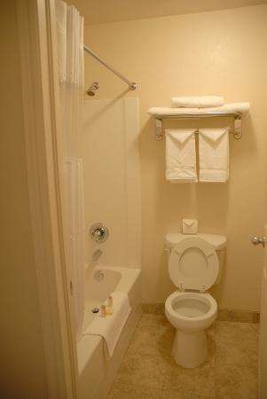 Bonneville Inn: Bathroom