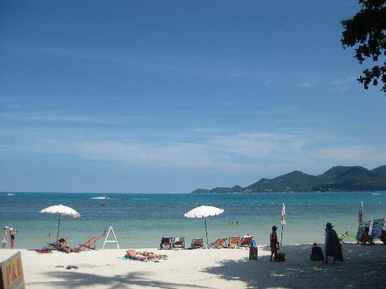 P&P Samui Resort : View from the footsteps of p&p, popular Hat Chaweng beach