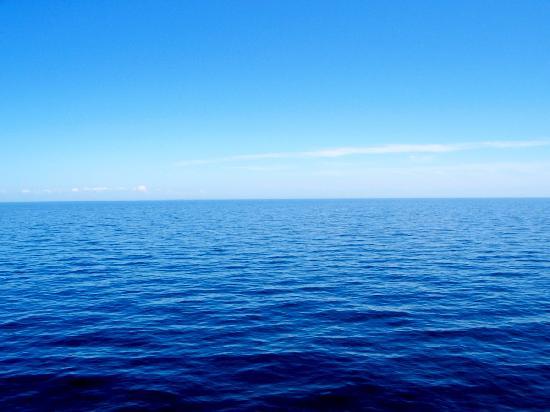 Calm Waters Скачать Торрент - фото 2