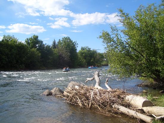 Durango Travelodge: Animas River behind motel