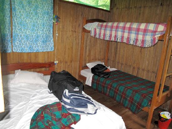 Amarongachi Jungle Eco-Lodge : view of our room on the last day.