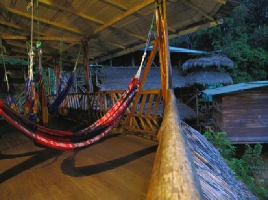Amarongachi Jungle Eco-Lodge: hammock area.