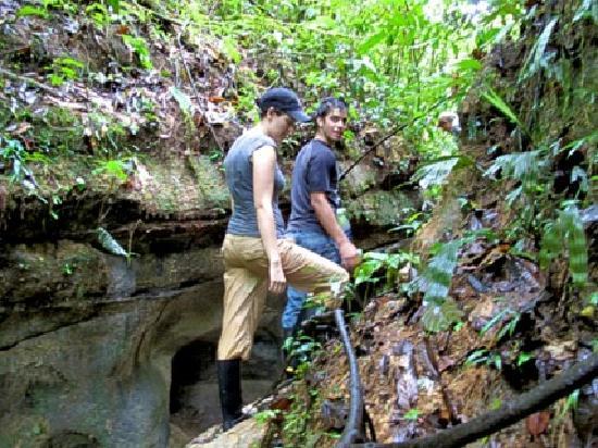 Amarongachi Jungle Eco-Lodge : jungle hike.