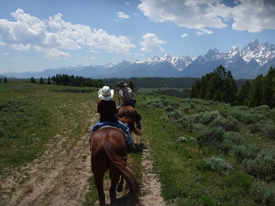 Moose, WY: Trail riding