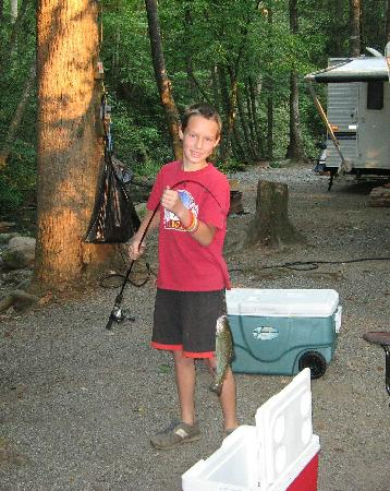Indian Creek Campground : Trout from the creek