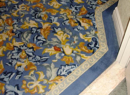 Chicken a la corridor, courtesy of Paris Housekeeping