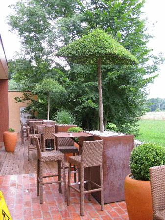 Ambient hotel Domzale: The terrace
