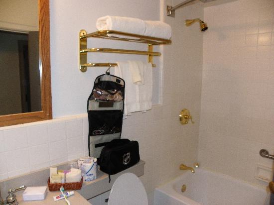 Inn at the Michigan League: the bathroom