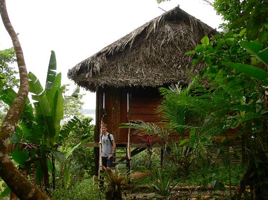 La Loma Jungle Lodge and Chocolate Farm: Cabin 2