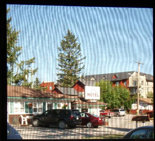Lido Motel: Looking out the screen door of our room.