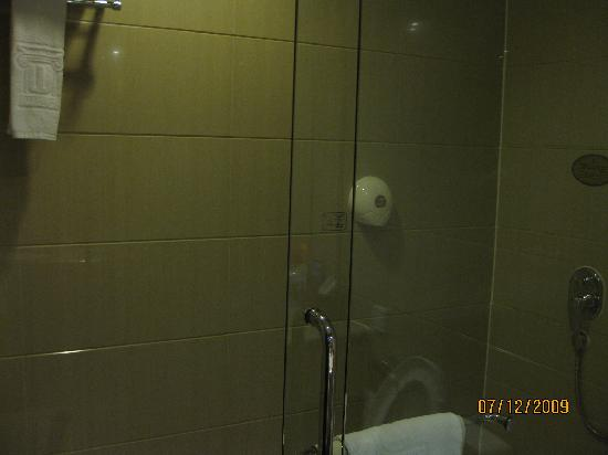 Wilson Hotel: Nice big shower stall