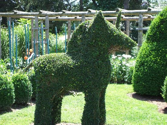 Bears Picture Of Green Animals Topiary Gardens Portsmouth Tripadvisor