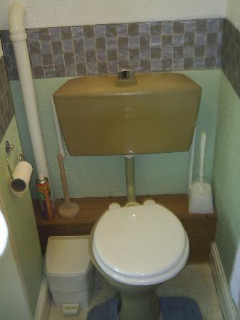 Ivydene Hotel: bathroom!