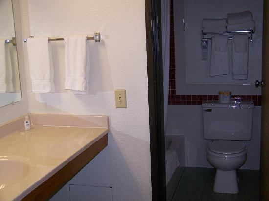 AmericInn Lodge & Suites Oshkosh: Bathroom and Vanity