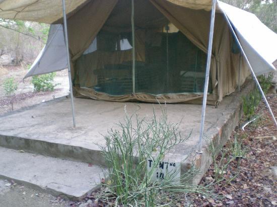 Bird Safari Camp: one of the safari tents