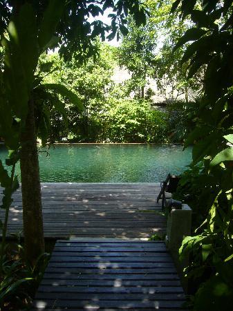 เดอะ ซันเดย์ แซงชูอารี่ รีสอร์ท แอนด์ สปา: Jungle pool