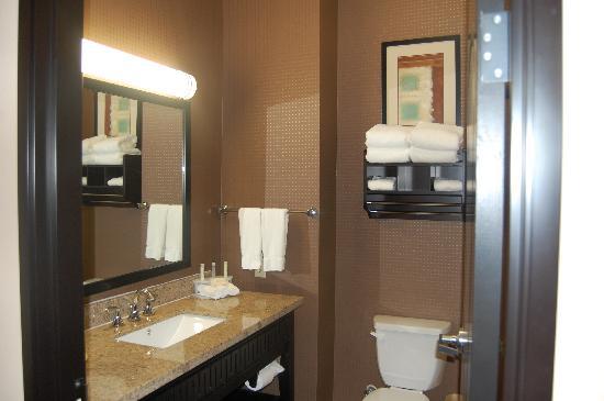 Holiday Inn Express Hotel & Suites - Glen Rose : Restroom