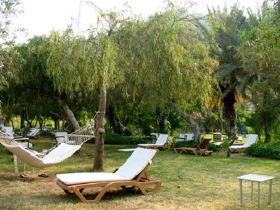 Olympos Lodge: Grounds