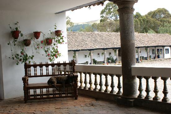 Hacienda Zuleta: Hacienda Zuleta