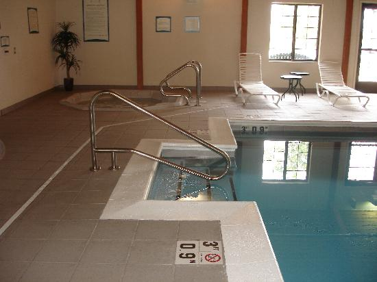 Staybridge Suites South: Pool/Jacuzzi