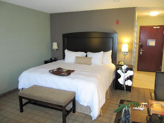底特律坎頓希爾頓恆庭旅館&套房酒店照片