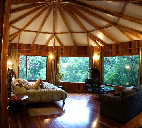 Hidden Canopy Treehouses Boutique Hotel Rising sun & Rising sun - Picture of Hidden Canopy Treehouses Boutique Hotel ...