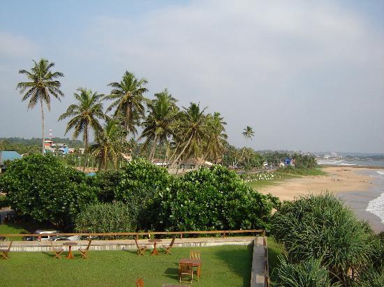 Why Visit Srilanka?