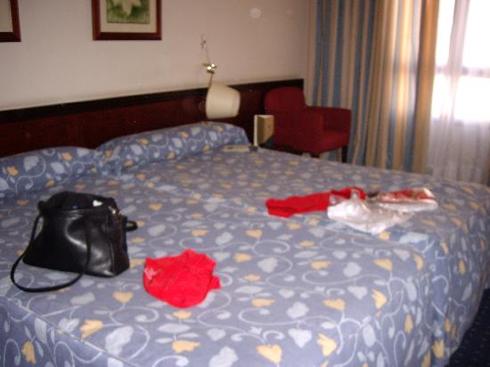 Abba Reino de Navarra Hotel: The room