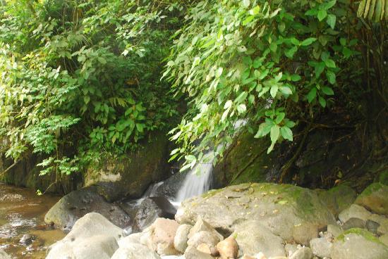 San Carlos, Costa Rica: waterfall