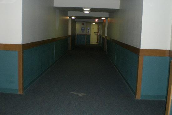 The Lodge at Angel Fire Resort: Hallways dark, dirty, and carpets torn