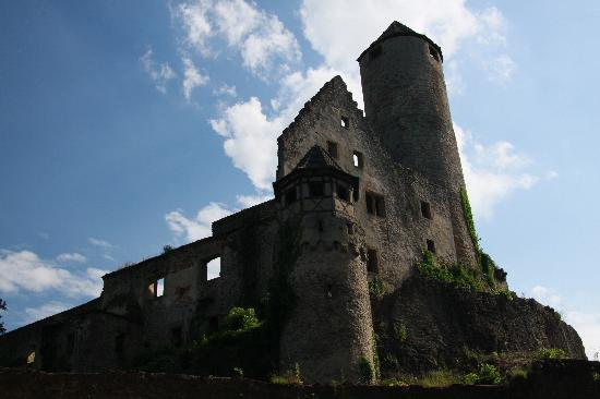 Neckarzimmern, Germany: The Castle