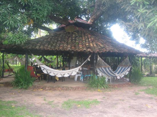 ديمز هوستال: Breakfast and Lounge area under mango tree