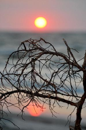Hunting Island State Park: Sunrise On HISP