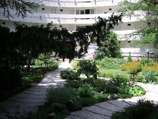 Hotel Raluca: the garden