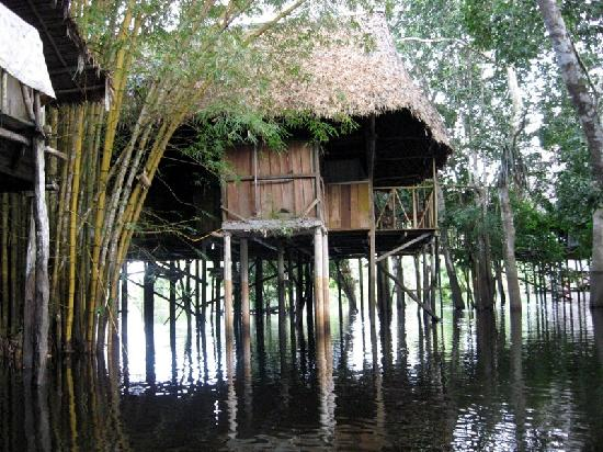Amazonia Expeditions' Tahuayo Lodge: Our Room