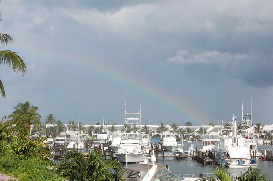 Treasure Cay Beach, Marina & Golf Resort : View of the marina from our room