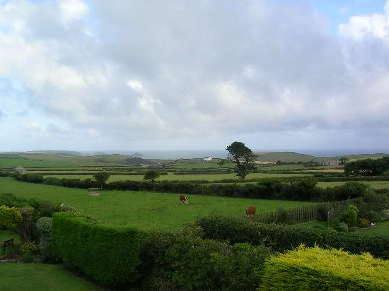 Westaway Guesthouse: View from Rosemary