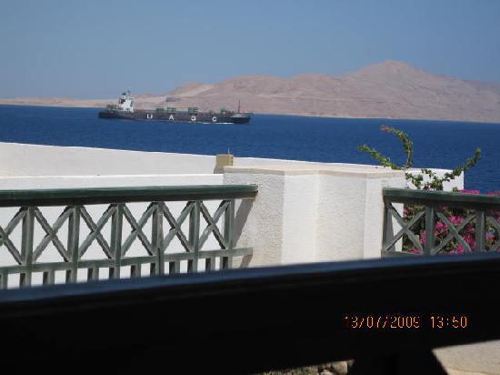 Coral Beach Resort Montazah: vista mare dalla camera