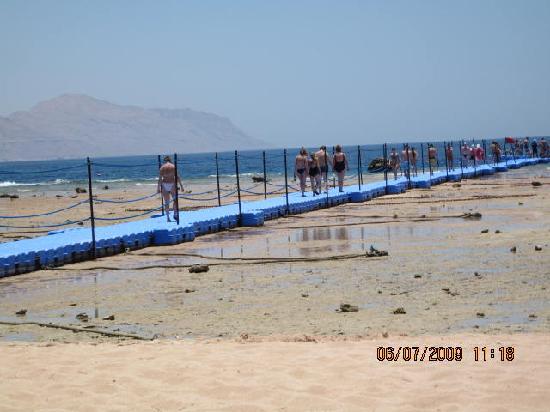 Coral Beach Resort Montazah: banchina sulla barriera corallina