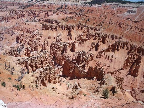 Cedar Breaks National Monument: Cedar Breaks