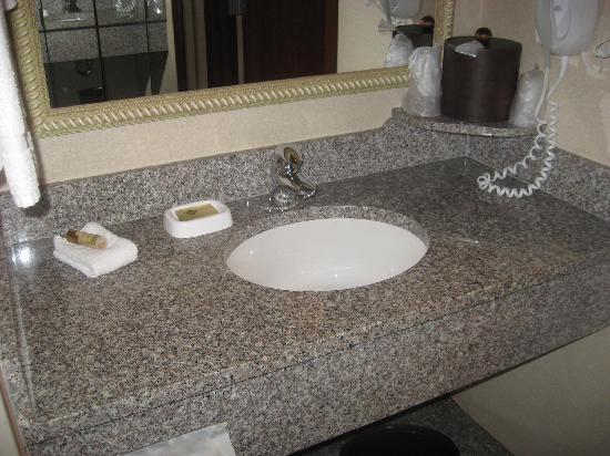 Drury Inn & Suites Montgomery: Sink