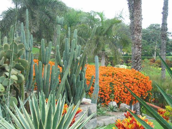 Parque de las Leyendas (Zoo): Gardens inside Zoo