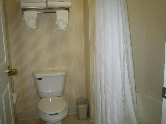 Homewood Suites by Hilton Wilmington - Brandywine Valley: Bathroom
