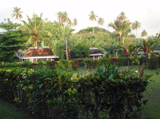 Safua Hotel: View of some fales across the garden
