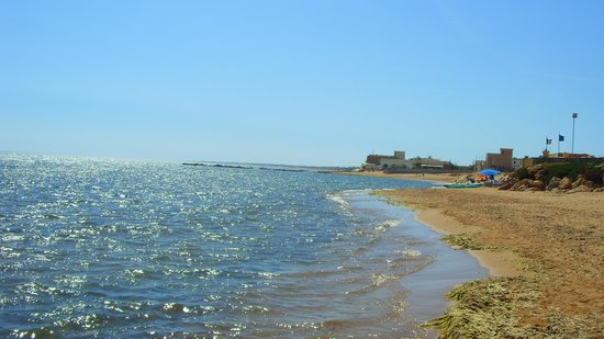 Castelvetrano, Italie : This is the hotel beach - a little seaweed, but somedays there is none at all!