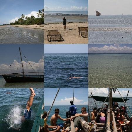 Tanga, Tanzania: A compilation of pics.