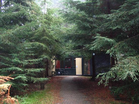 Center Parcs Longleat Forest: a chalet in the woods