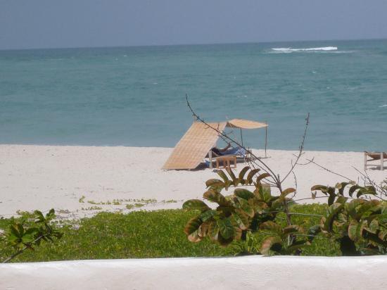 Ras Kutani: The private hotel beach - pure bliss