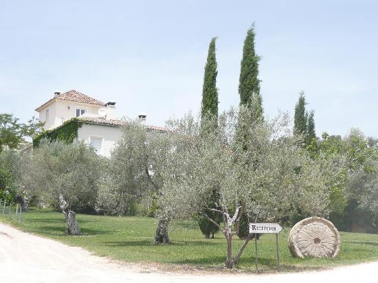 Hotel La Fuente De La Higuera: road to the hotel