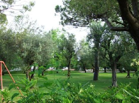 Villa Ferretti : Parkähnlicher schattenspendender Garten